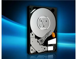 HDD WD RE4 ENTERPRISE 500GB WD5003ABYX
